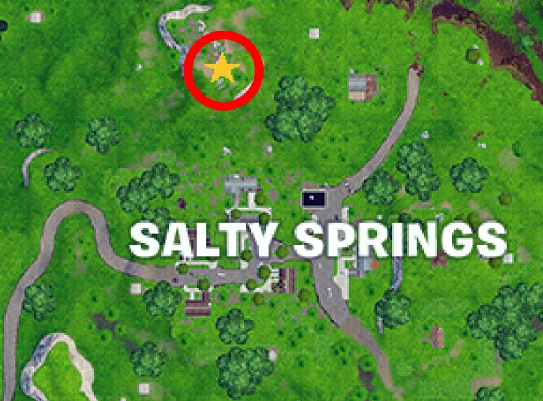 Salty-Springs