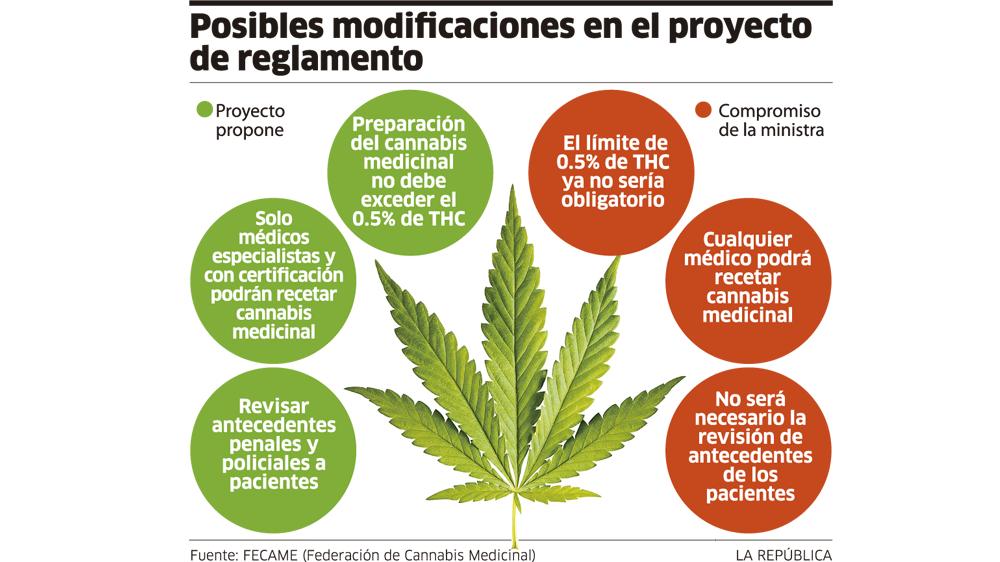 Cannabis medicinal: Minsa y colectivos logran acuerdos