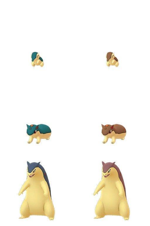 Pokemon GO cyndaquil quilava typhlosion shiny