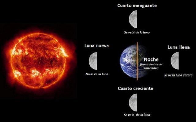 luna-fases