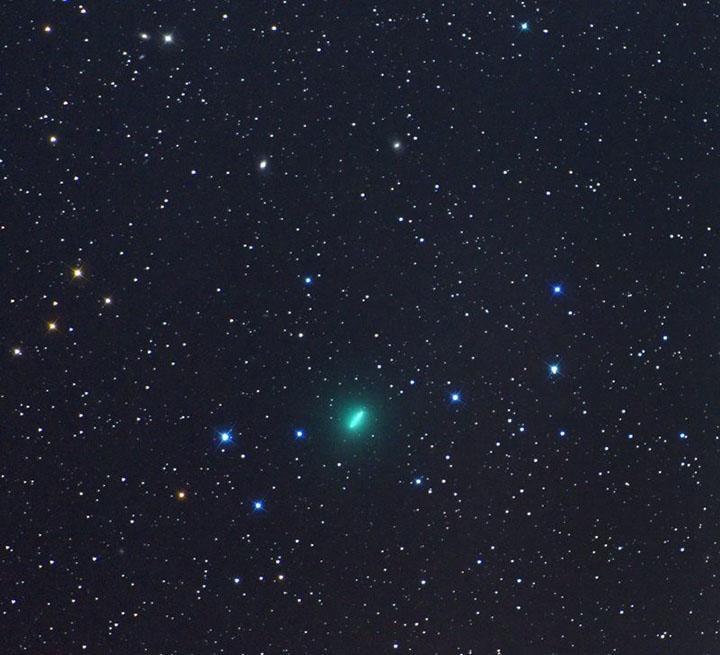 Cometa Iwamoto