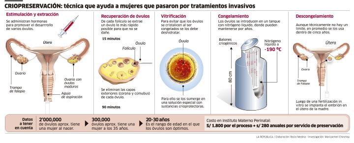 criopreservacion, ovulos